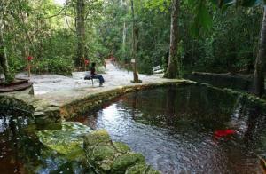 AmazonEcopark -Manaus3